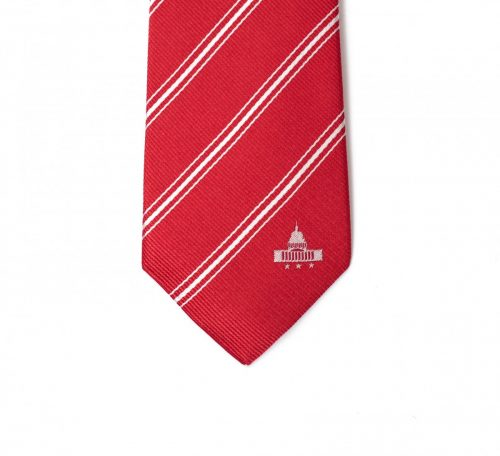 Washington DC Skinny Tie
